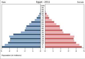 Population Pyramid for Egypt 2011