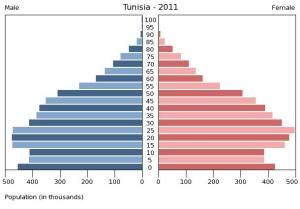 Population Pyramid 2011 Tunisia