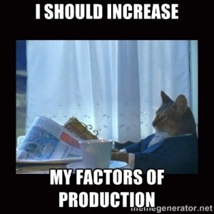 "picture of a cat reading newspaper saying ""I should increase my factors of production"""